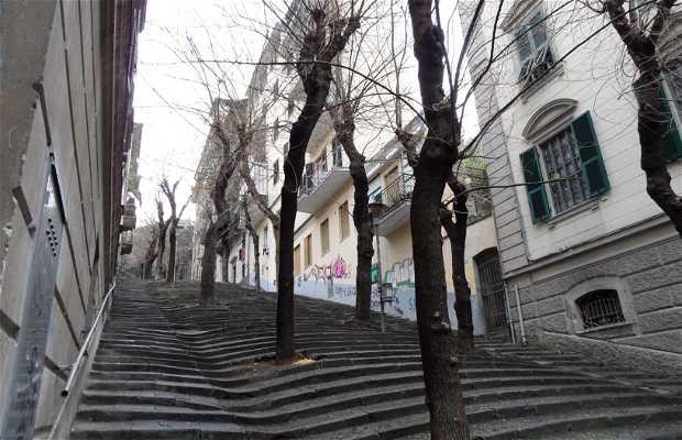 Escalinata Cernaia
