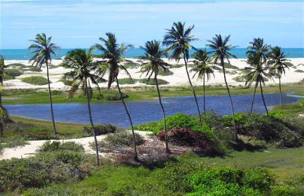 Spiaggia Cumbuco