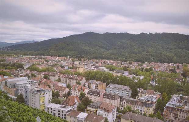 Monte Schlossberg