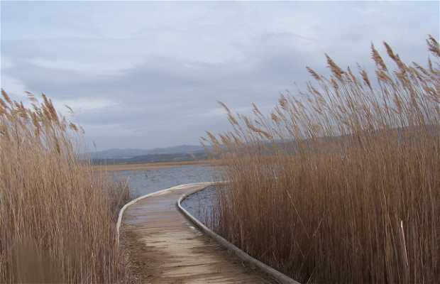 Pasarela de madera de La Laguna de Pitillas