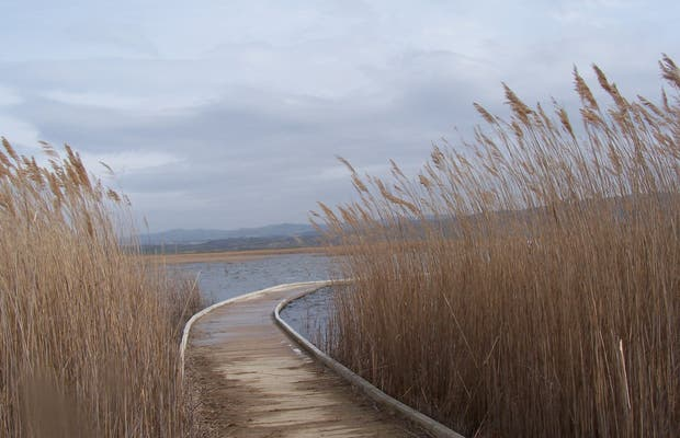 The wooden footbridge of Pitillas lagoon