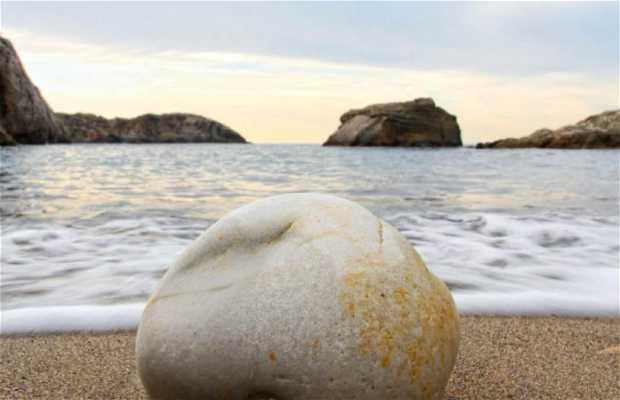 Playa del Dólar (Castrillon)