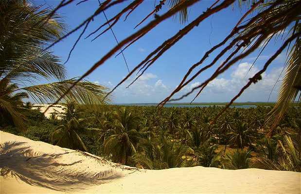 Praia do Mangue Seco