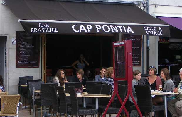 Cap Pontia