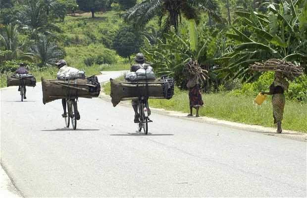 Caminos de Udzungwa
