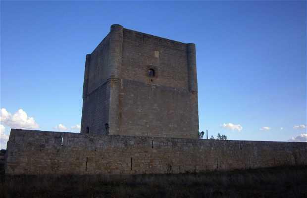 Castillo de Cabañas de Castilla