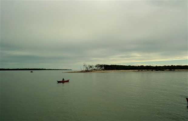 Ilha Pontal do Sul