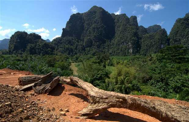 Trekking nel Parco Nazionale di Khlong Phanom