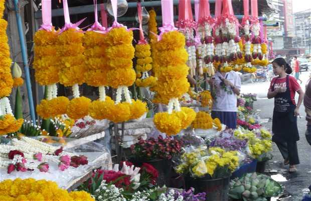 Festival das Flores de Chiang Mai