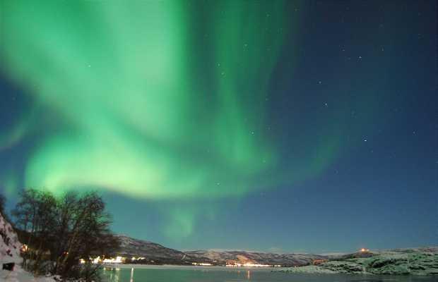 Aurora Boreal en Alta