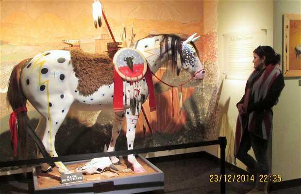 Museo Nacional Comanche y Centro Cultural en Lawton, Oklahoma.