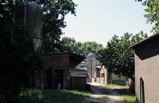 Granja Sant'Alberto