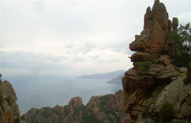 Trekking Tête de Chien