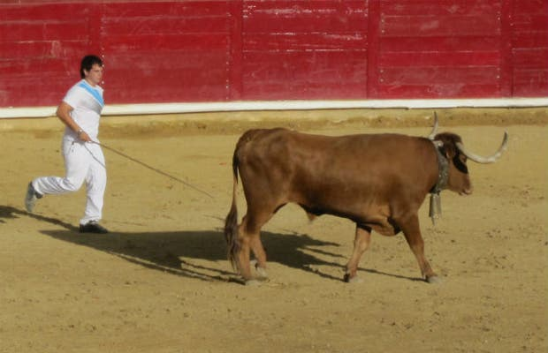 Encierro de Pamplona