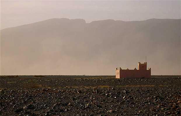 Desierto de Erfoud