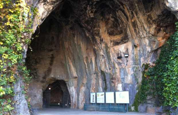 Grotte des Calaveras