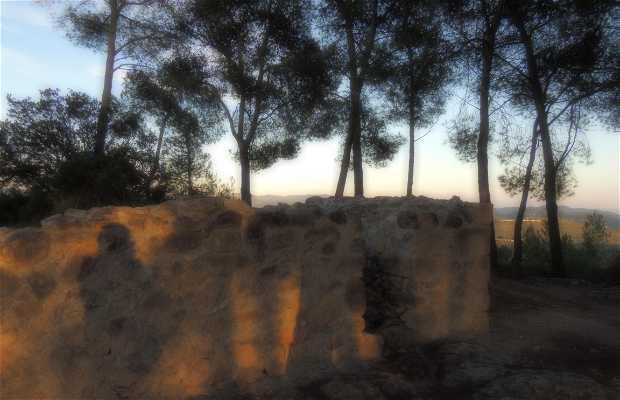 Necrópolis dels Albats