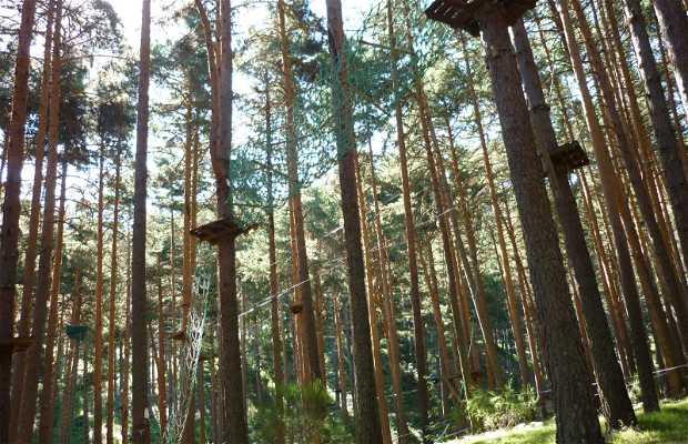 De pino a pino Navafría