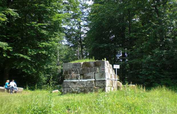 Ruinas de Sarmizegetutsa Regia