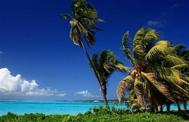 Isla de Savai