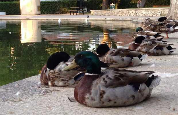 Parque do Bonfim