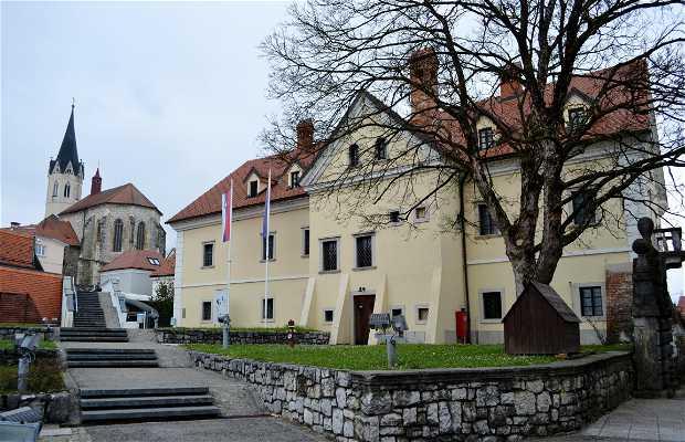Museo de Dolenjska