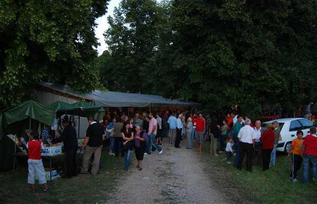 Fiesta de Otocac