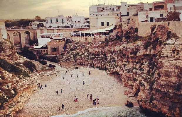 Playa de Lama Monachile
