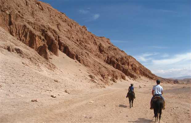 Cavalgada pela Cordilheira do Sal