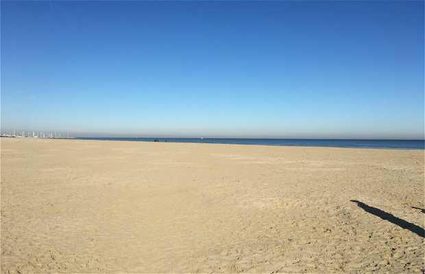 Playa de Cervia