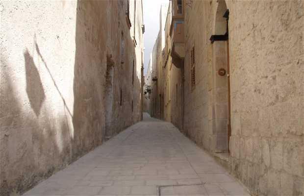 Old city (ciudad vieja) Mdina