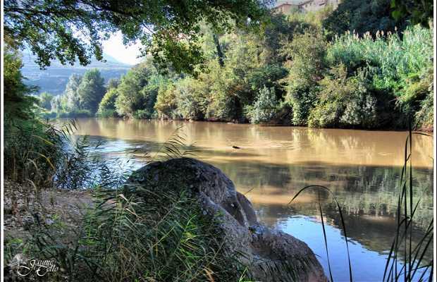 Río Lobregat