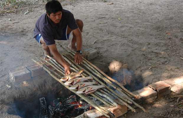Gastronomía de las Aldeas Indígenas de Rondonia