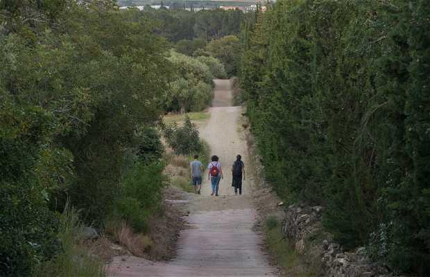 Ruta 5: Mare de Déu de la Roca - Faro de los Marineros