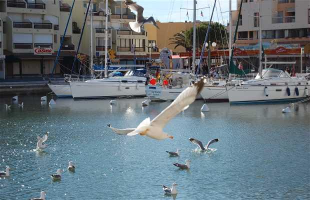 Puerto de Gruissan