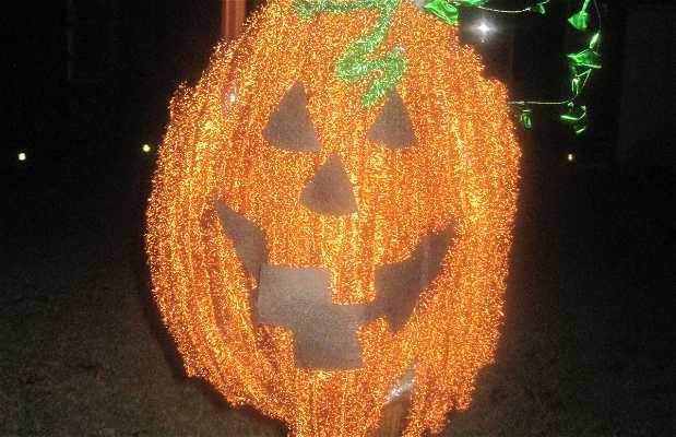 Halloween in Avocet Drive