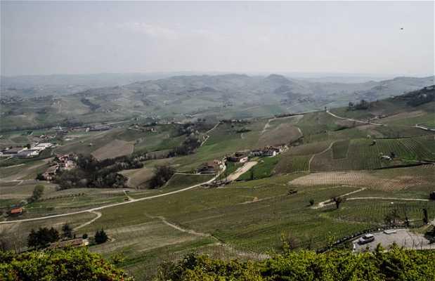 Vineria Osteria San Giorgio Viarte SNC