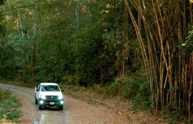 Parc National Guatopo
