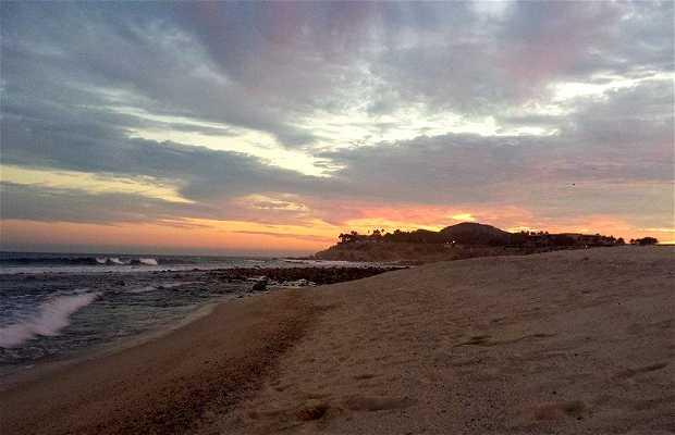 Playa El Tule