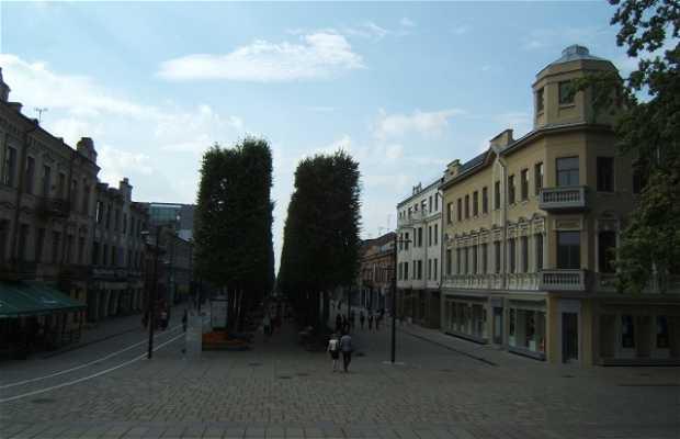Kaunas, Lituania
