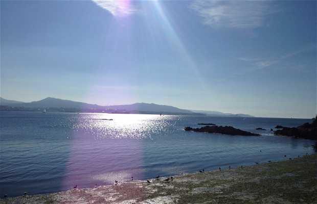Playa do Con