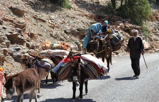 Route 105 Agadir-Tafraoute
