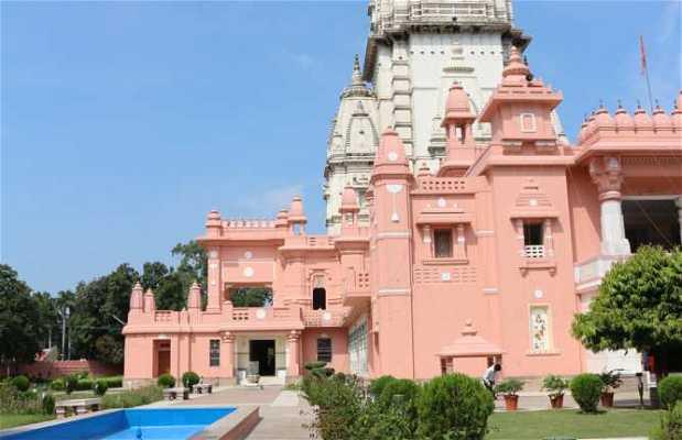 Nuevo Templo Kashi Vishvanath