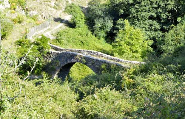 Puente Genovés de Guisoni