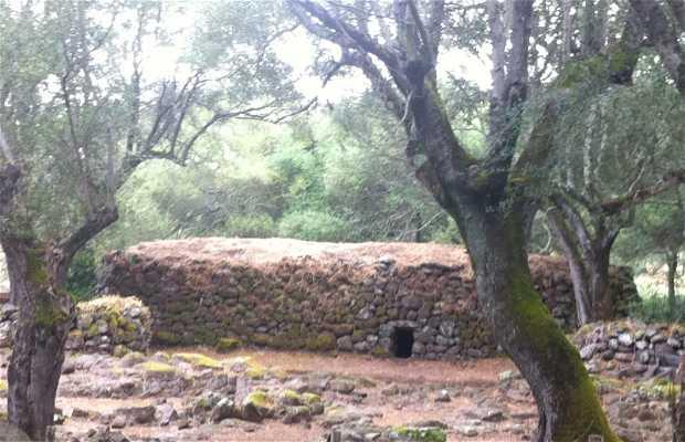 Sanctuary Nuraghic Santa Cristina