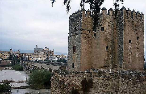 Walls of Córdoba