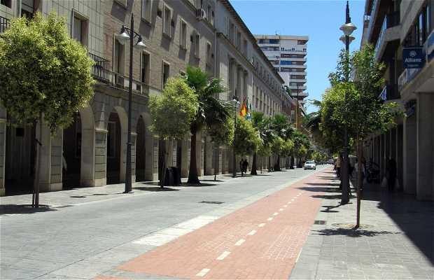 Avenida Martín Alonso Pinzón