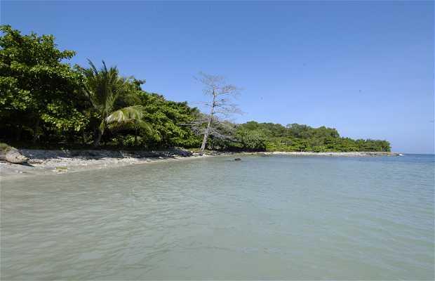 Punta Sal Beach