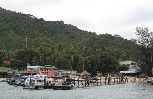 Puerto de Koh Tao