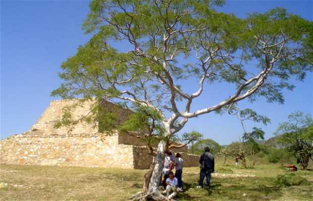 La Mesa (Ruinas de Tehuacán Viejo)